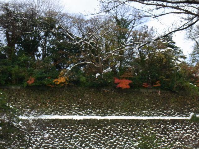 金沢城公園の石垣と紅葉